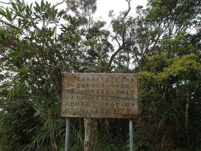 飛鳳山 (110).JPG
