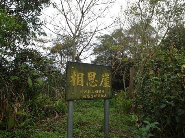 飛鳳山 (111).JPG