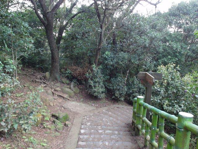 飛鳳山 (112).JPG