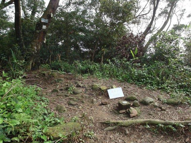 飛鳳山 (125).JPG
