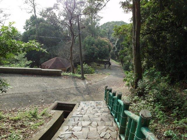 飛鳳山 (138).JPG