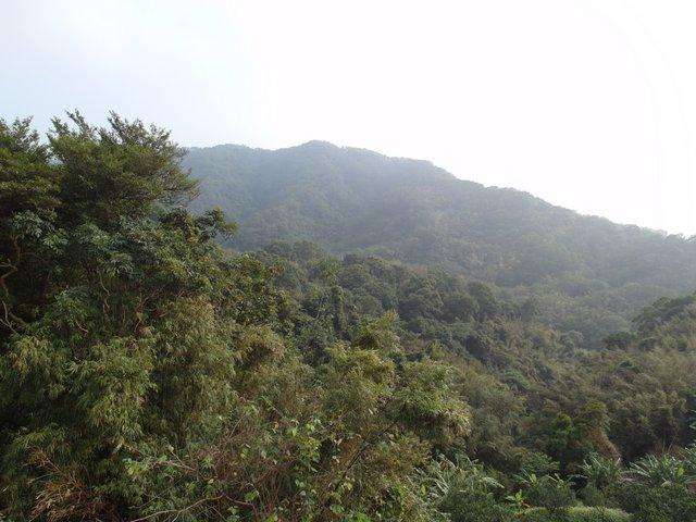 飛鳳山 (150).JPG