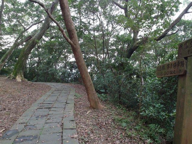 飛鳳山 (174).JPG