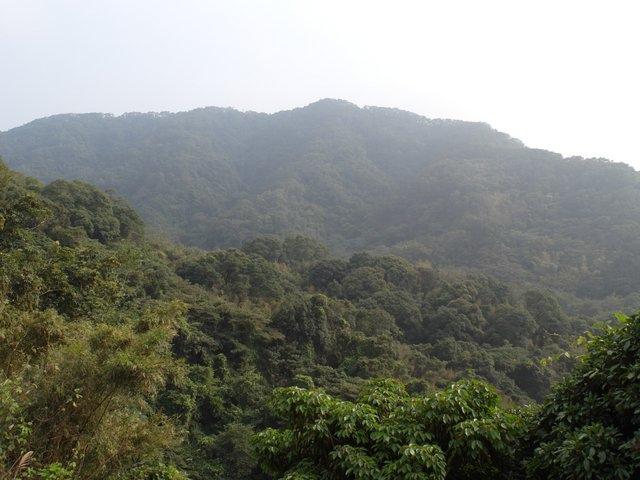 飛鳳山 (196).JPG
