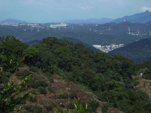 飛鳳山 (199).JPG
