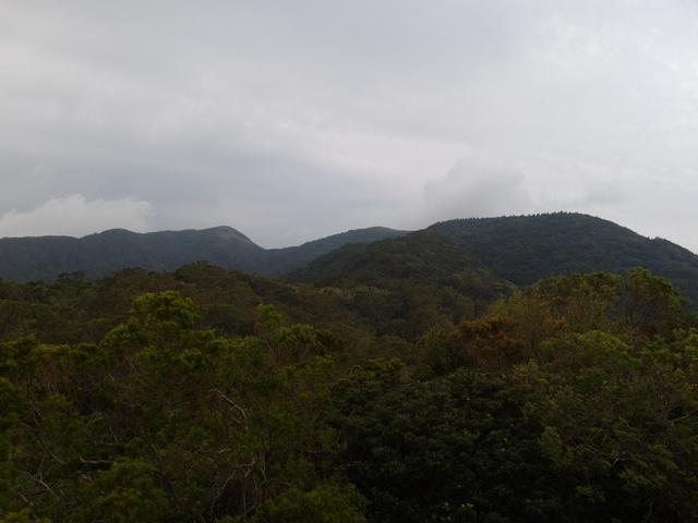 中正山 (233)