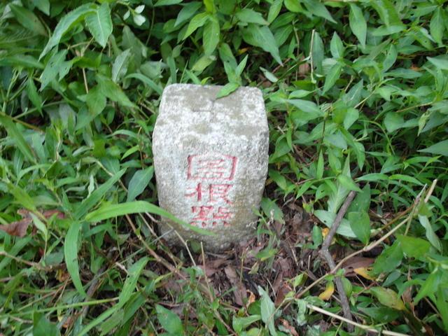 中正山 (245)