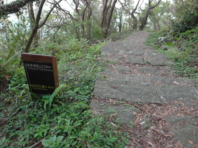 中正山 (250)