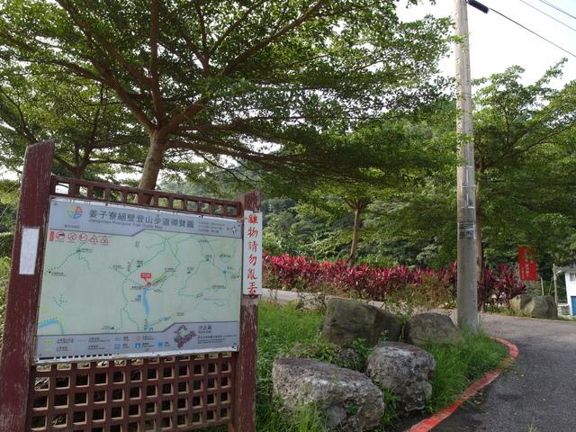 姜子寮絕壁 (17).JPG