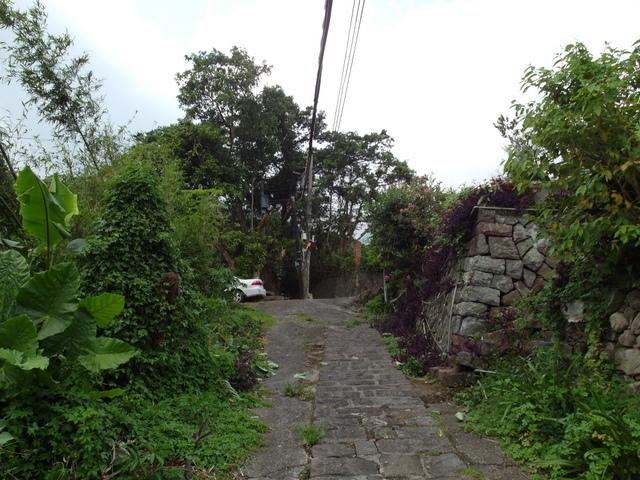 法雨寺步道 (17).JPG