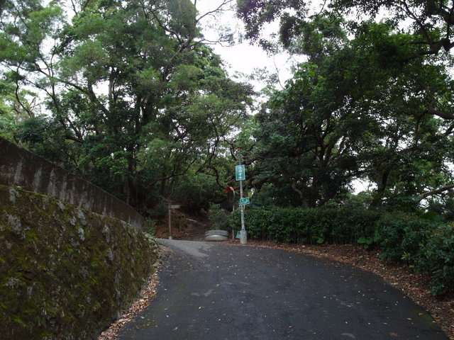 法雨寺步道 (19).JPG