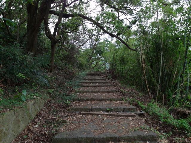 法雨寺步道 (23).JPG