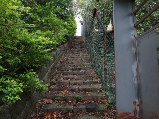 法雨寺步道 (30).JPG
