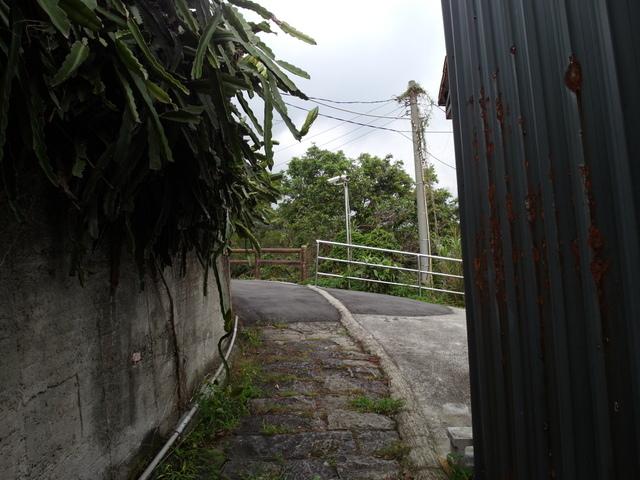法雨寺步道 (31).JPG