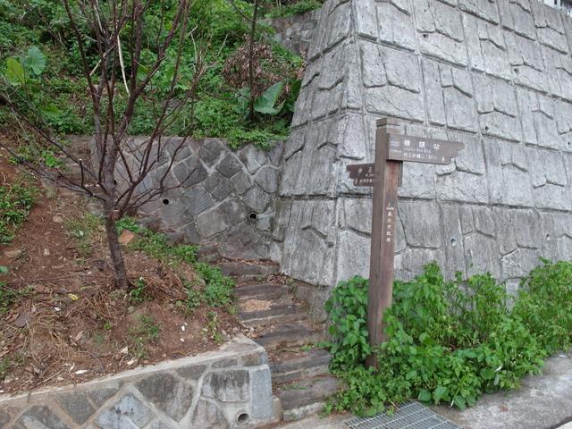 法雨寺步道 (74).JPG