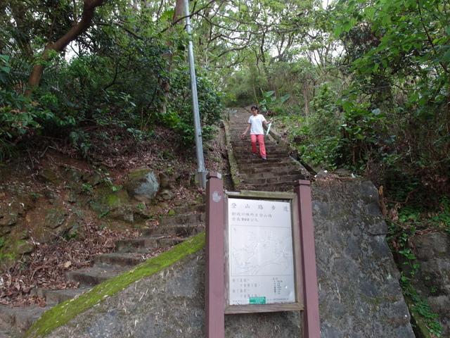 法雨寺步道 (83).JPG