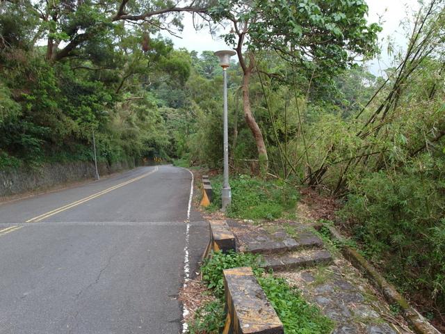 法雨寺步道 (84).JPG