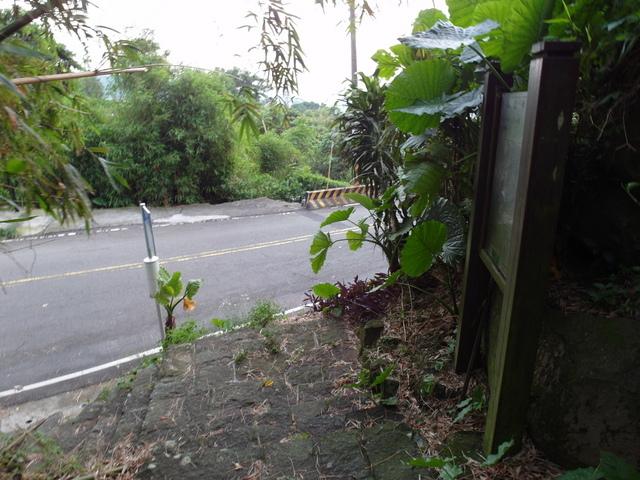 法雨寺步道 (85).JPG