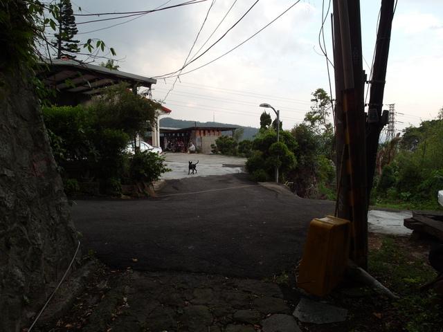 法雨寺步道 (90).JPG
