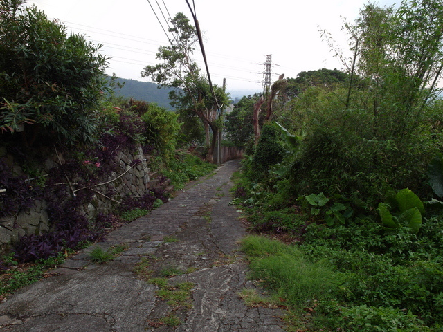 法雨寺步道 (92).JPG