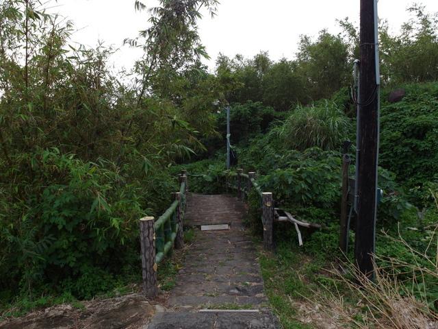 法雨寺步道 (97).JPG