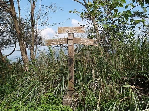 紫微聖母環山步道 (22).JPG