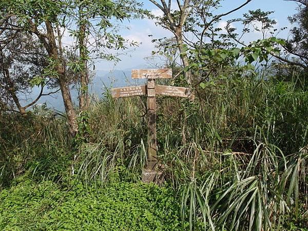 紫微聖母環山步道 (32).JPG