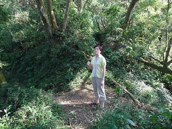 紫微聖母環山步道 (39).JPG