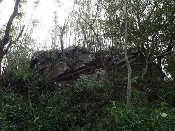 紫微聖母環山步道 (43).JPG