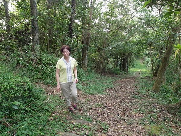 紫微聖母環山步道 (61).JPG