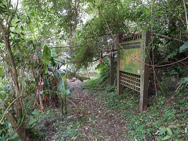 紫微聖母環山步道 (63).JPG
