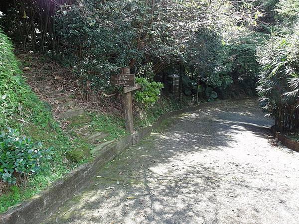 紫微聖母環山步道 (115).JPG