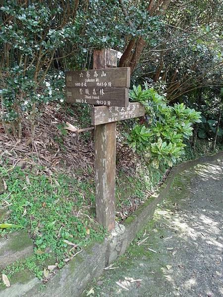 紫微聖母環山步道 (116).JPG