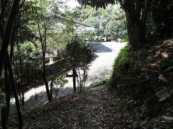 紫微聖母環山步道 (119).JPG