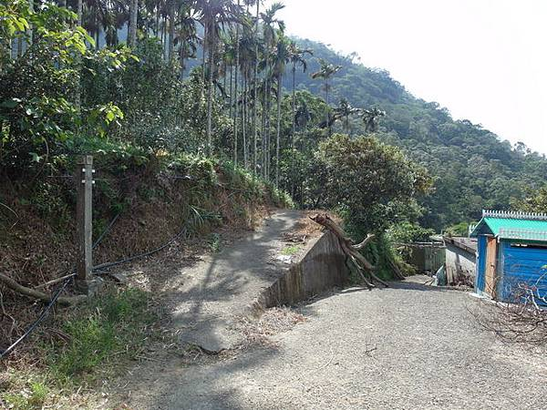 紫微聖母環山步道 (133).JPG