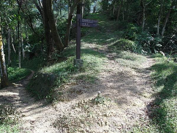 紫微聖母環山步道 (137).JPG