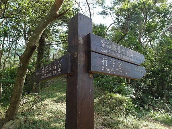 紫微聖母環山步道 (138).JPG