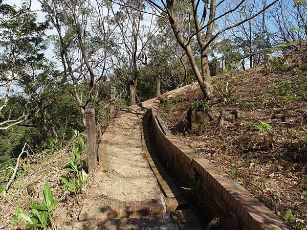紫微聖母環山步道 (161).JPG