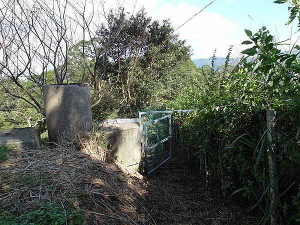 紫微聖母環山步道 (163).JPG