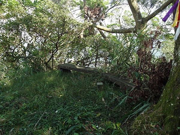 紫微聖母環山步道 (166).JPG