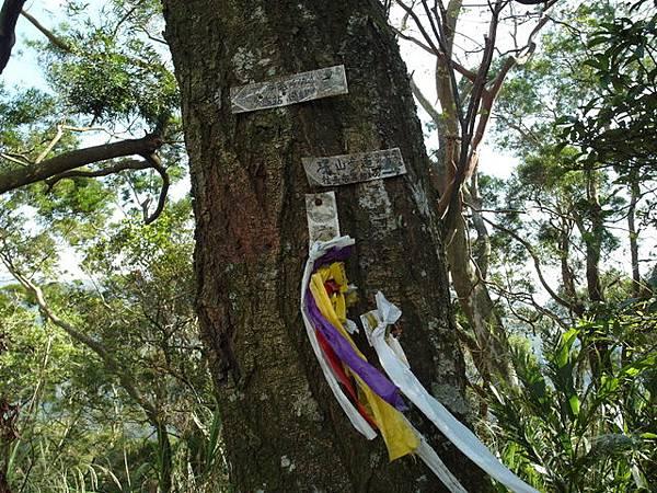 紫微聖母環山步道 (167).JPG