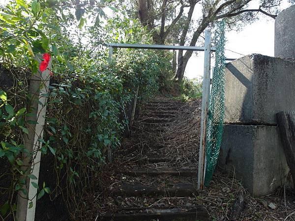 紫微聖母環山步道 (179).JPG