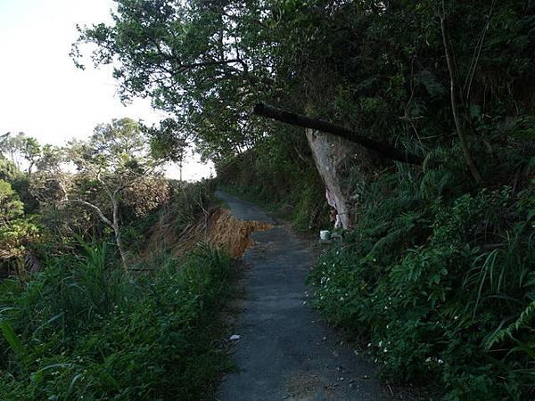 紫微聖母環山步道 (181).JPG