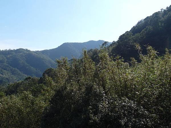 紫微聖母環山步道 (187).JPG