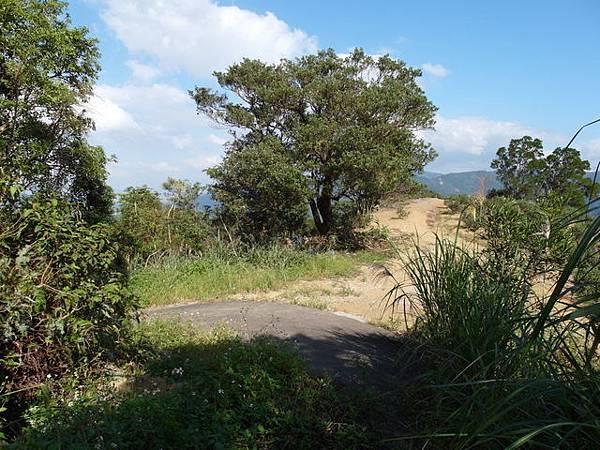紫微聖母環山步道 (191).JPG