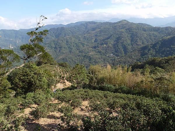 紫微聖母環山步道 (193).JPG