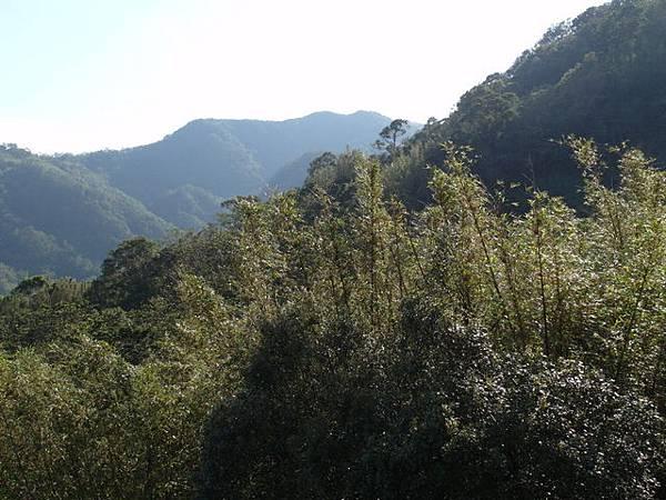 紫微聖母環山步道 (198).JPG