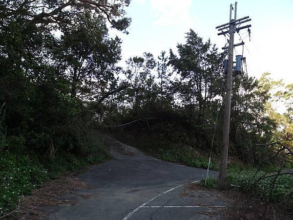 紫微聖母環山步道 (200).JPG