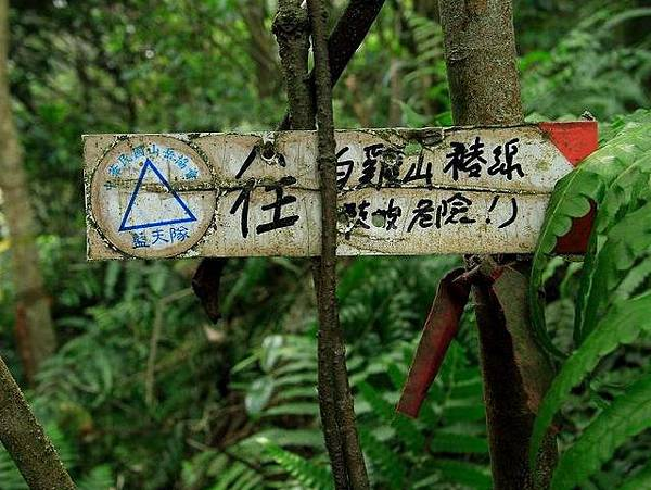 紫微聖母環山步道 (219).jpg