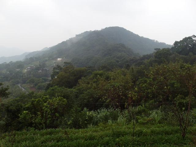 白雞山、雞罩山 (4).JPG